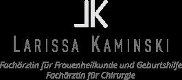Kaminski Website